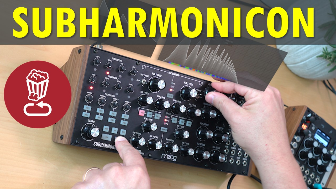 Moog Subharmonicon review and tutorial